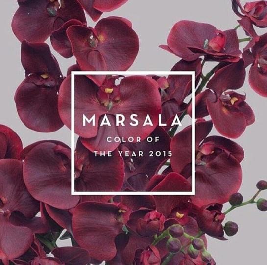 marsala-color-year-2015-couleur-pantone-red-rouge-violet-mauve-inspiration