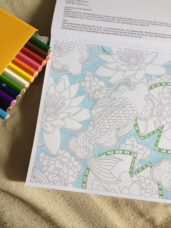librairie-coloriage-livrs-book-anti-stress-bic-kids-crayons-couleurs-colors-japon-inde-lotus-carpe