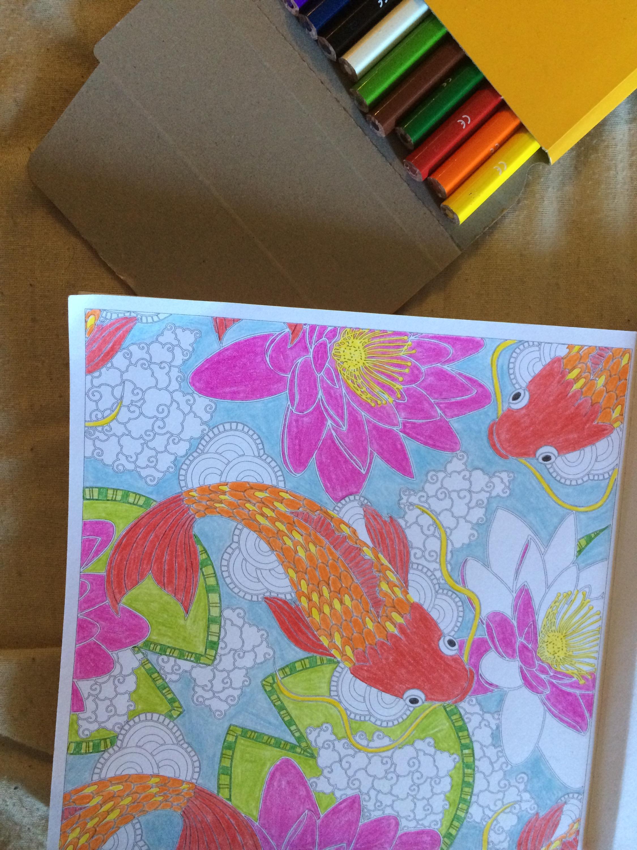librairie-coloriage-livrs-book-anti-stress-bic-kids-crayons-couleurs-colors-japon-inde-